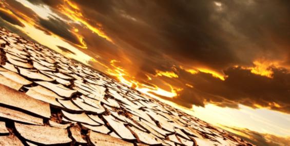 17 июня - Всемирный день по борьбе с опустыниванием и засухой